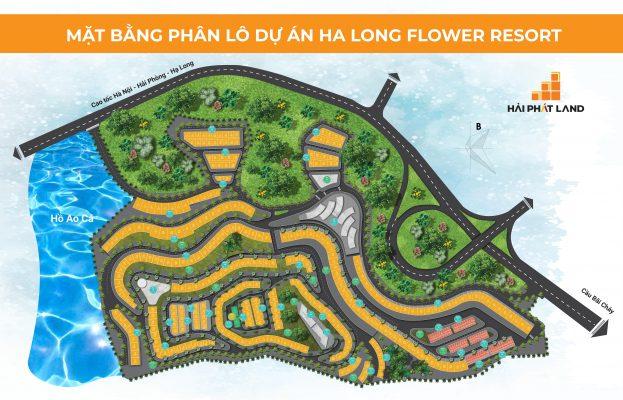 Mặt bằng dự án Hạ Long Flower Resort