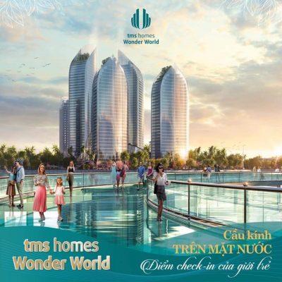 Cầu kính trên nước của dự án TMS Homes Wonder World